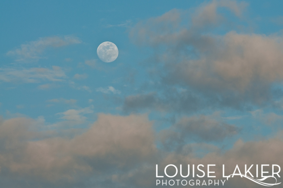 Full Moon, Moonrise, Clouds, Dusk