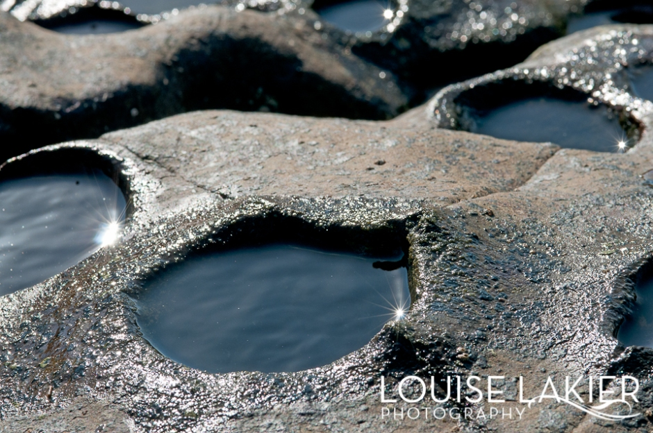 Tidal Pools, El Gigante, Nicaragua, Sea Life, Redondo Bay, Travel Photography, Wildlife Photography
