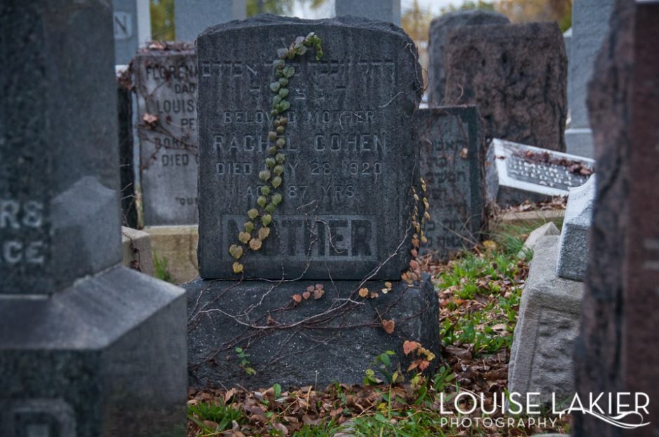 a headstone covered in vines