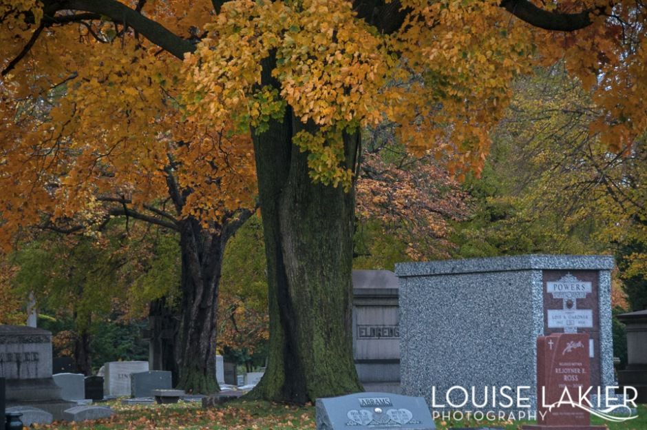 Oranges, yellows and greens color the grey skies in Oakwoods Cemetery
